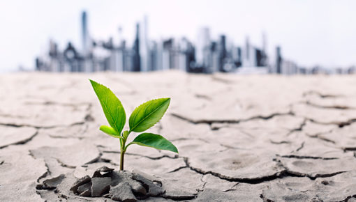 Urban Resilience Education – new International Master Degree