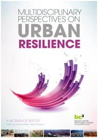 Our First Book on Urban Resilience Available ONLINE